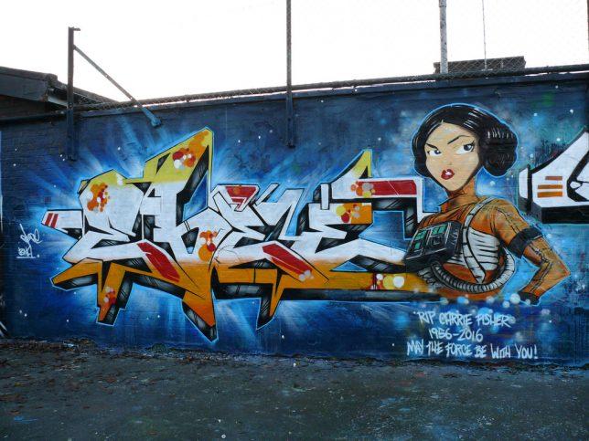 leia-street-art-7c-644x483.jpg